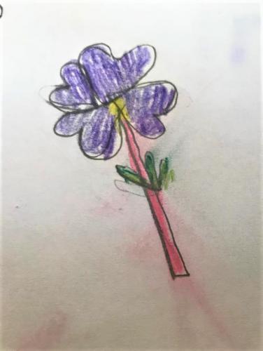 Yara, 8 Jahre - VEILCHEN