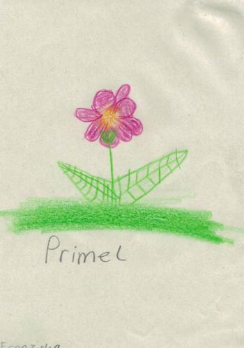 Franziska, 10 Jahre - PRIMEL